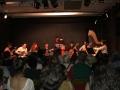 concert-an-vert-cordes-pinces